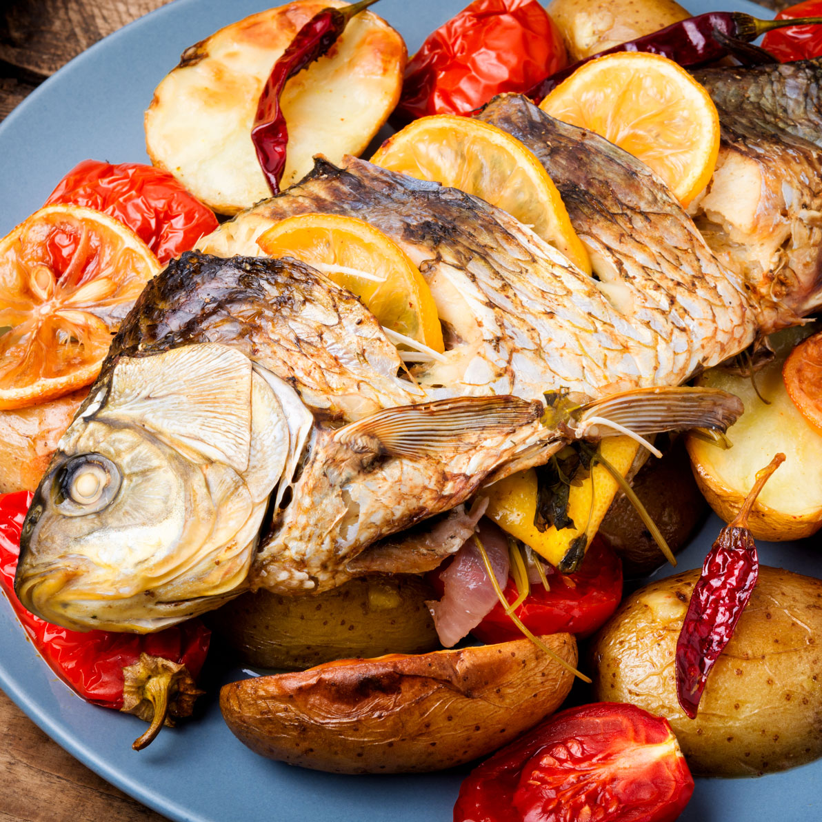 grilled-delicious-fish-XKHMG2J